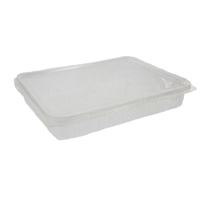 Clear Compostable Pla Container 217 X 167 X 35Mm
