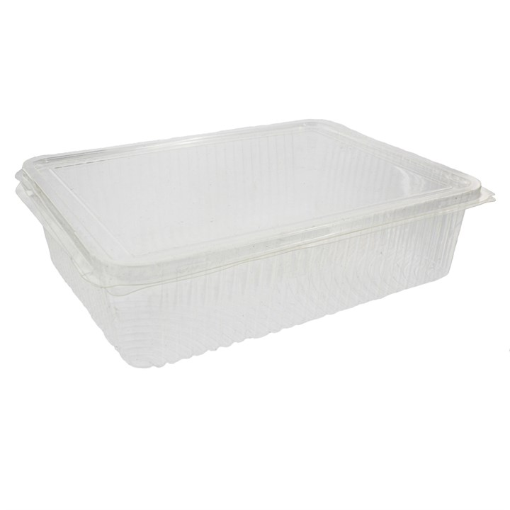 Clear Compostable Pla Container 217 X 167 X 55Mm